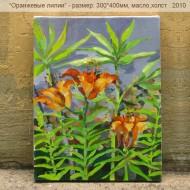 Orangevie lilii_300_400